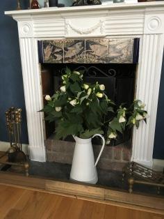 Garden flowers in the fiereplace